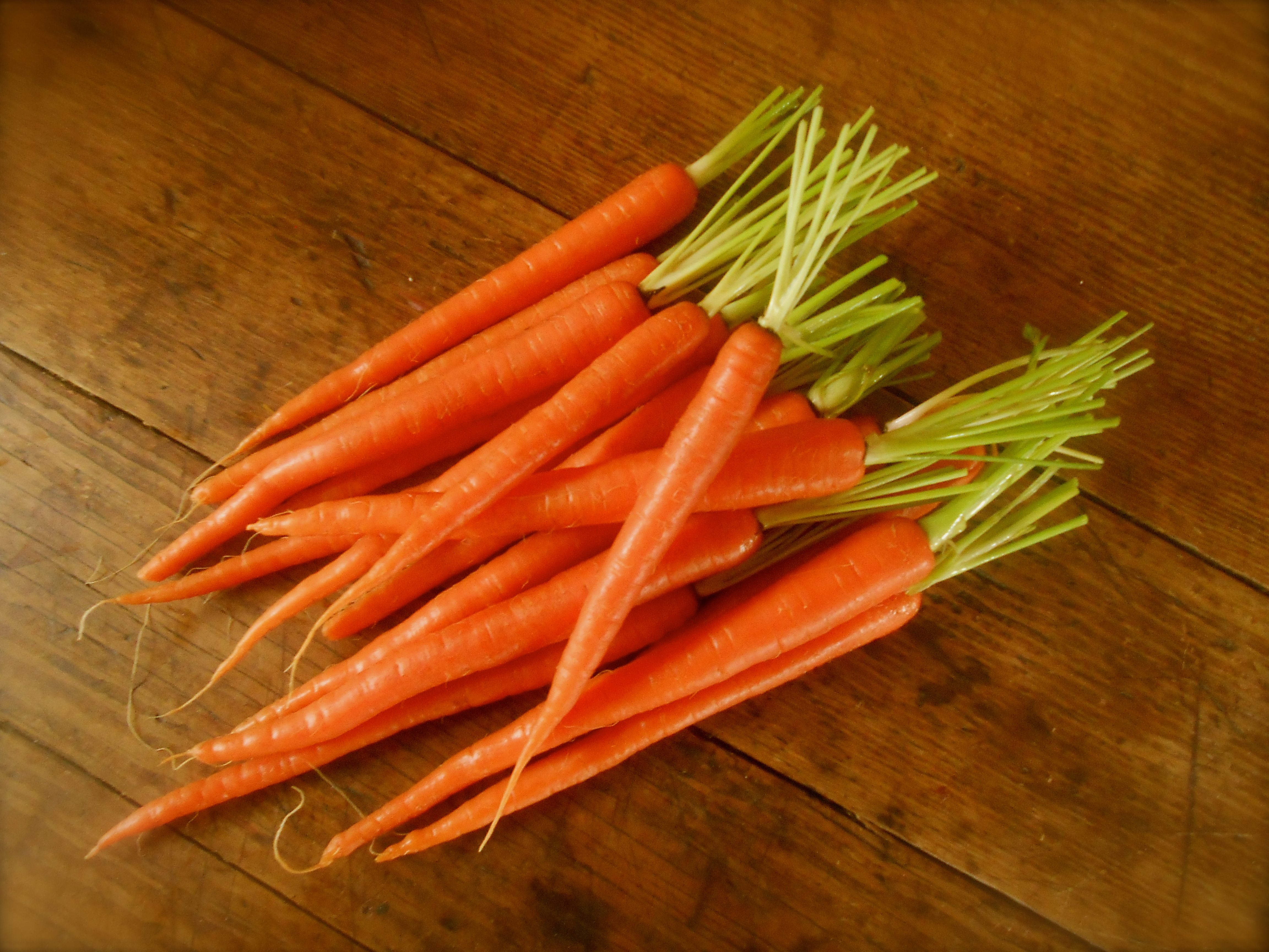 spice crusted carrots with harissa yogurt | COTTAGE GROVE HOUSE