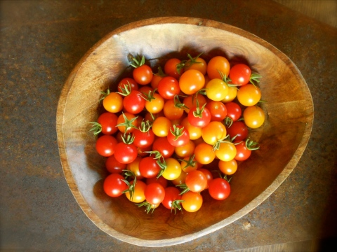 garden fresh cherry tomatoes